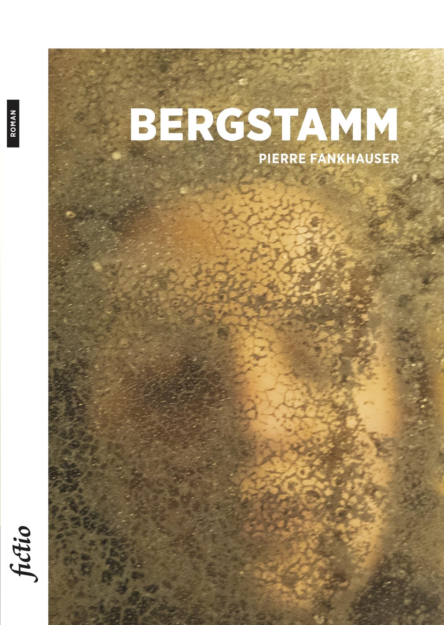Bergstamm sur le blog de Francis Richard